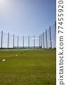 golf, golfing, golf course 77455920