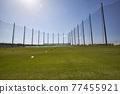 golf, golfing, golf course 77455921