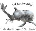rhinoceros beetle, bug, hexapod 77463647