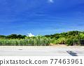 Landscape in Okinawa 77463961