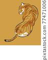 老虎 虎 動物 77471006