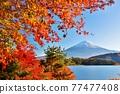 富士和秋葉 77477408