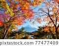 富士和秋葉 77477409