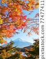 富士和秋葉 77477411