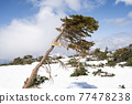 crest, mountain peak, peak 77478238