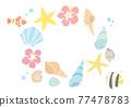 外殼 殼 貝類 77478783