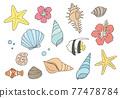 外殼 殼 貝類 77478784