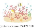 海底 魚 一套 77478810