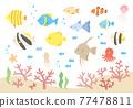 魚 漂亮 一套 77478811