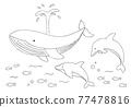 鯨魚 海豚 矢量 77478816