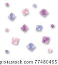 矢量 繡球花 花朵 77480495