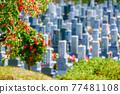 通過鮮綠色的樹枝和樹葉看到的公墓風光 77481108