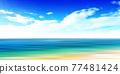Sea sky scenery background 77481424
