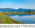 azumino, paddy, spring 77481910
