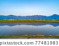 azumino, paddy, spring 77481983