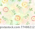輕柔的罌粟和桉樹插圖 77486212
