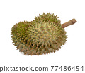 Green durian, a close up of Thai tropical smelly fruit food isolated on white background. 77486454