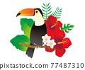 hibiscus, bird, birds 77487310