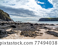 The Silver Strand in County Donegal - Ireland 77494038