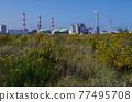 grassland, factories, factory 77495708