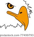 剪影 鳥兒 鳥 77499793