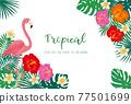 熱帶 葉子 葉 77501699