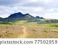 Skaftafell national park landscape, south Iceland landmark 77502959