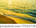 海 大海 海洋 77505738