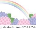 繡球花 花朵 花 77511756