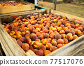 Boxes of fresh harvested peaches 77517076