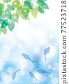 金魚 漣漪 波紋 77523718