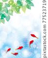 金魚 漣漪 波紋 77523719