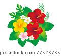 hibiscus, bird, birds 77523735