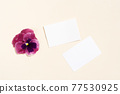Pansy flowers styled stock scene 77530925