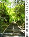 tomb, stone steps, step 77532754