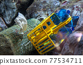 Plastic and covid mask waste underwater 77534711