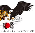 eagle, bird, birds 77536591