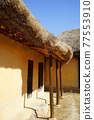 Thatched house 77553910