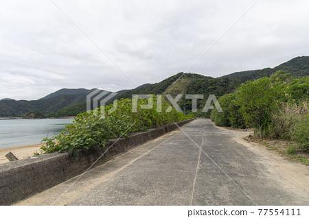 아마미오시마, 아마미오오시마, 바다 77554111