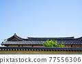 Tile roof 77556306