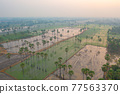 Aerial view of Dong Tan trees in green rice field in national park at sunset in Sam Khok district in rural area, Pathum Thani, Thailand. Nature landscape tourist attraction in travel trip concept. 77563370