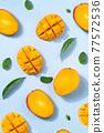 芒果 陽光 水果 台灣 Taiwan fruit mango マンゴー 77572536