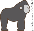 Gorilla cute illustration 77573071