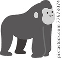 Gorilla cute illustration 77573074