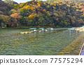 togetsu bridge, Arashiyama, spring 77575294