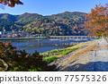togetsu bridge, Arashiyama, katsura river 77575326