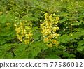 亮黃色顯眼外套斜紋玫瑰色 77586012