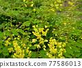 亮黃色顯眼外套斜紋玫瑰色 77586013