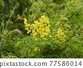 亮黃色顯眼外套斜紋玫瑰色 77586014