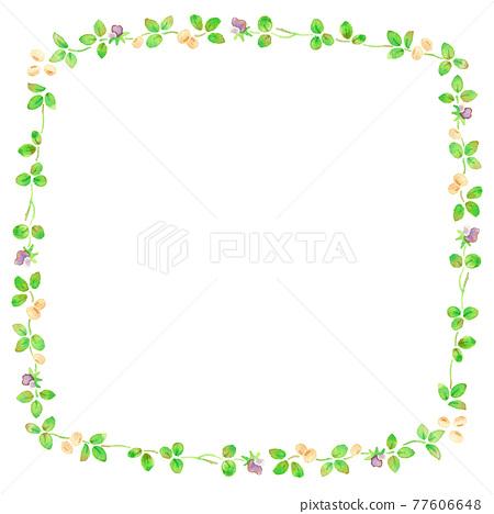 soybean, ruled line, bean 77606648